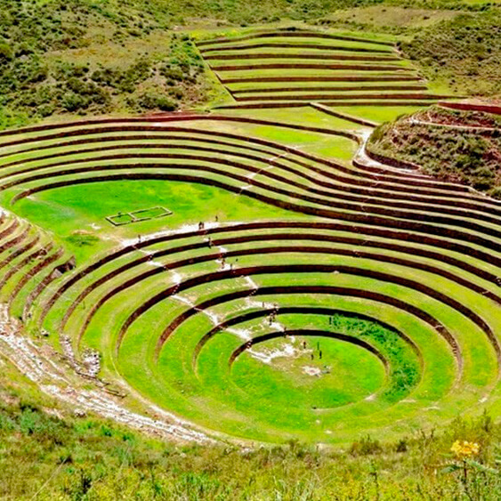 Tour to Moray and Salt Mines Of Maras in half day